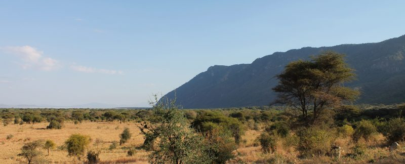 Camping Safari Tanzania Highlights