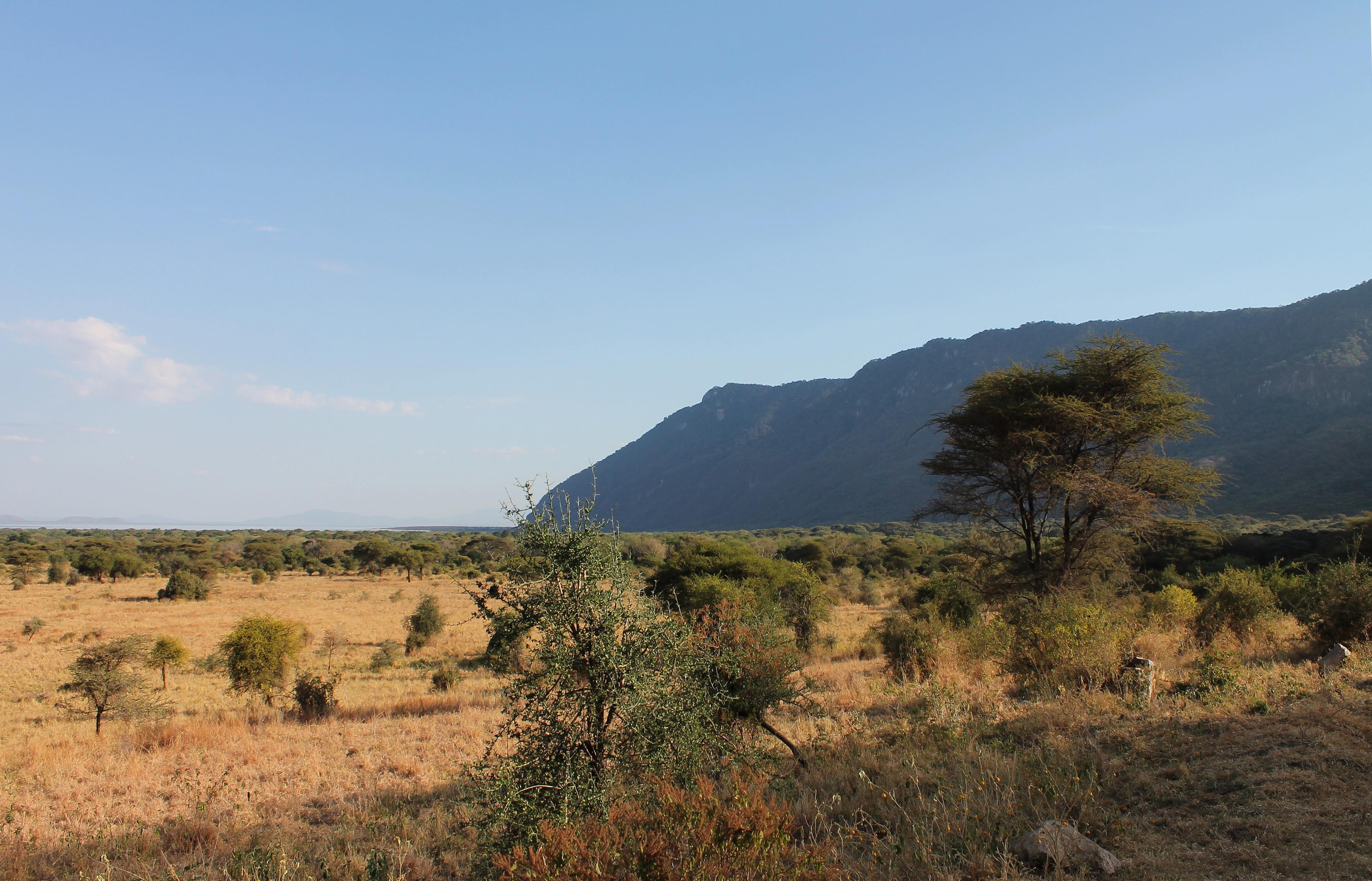 Camping Safari Tanzania Highlights
