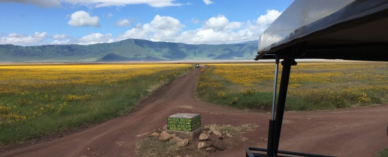 Camping Safari Tanzania Off the Beaten Track Ngorongoro National Park Tanzania