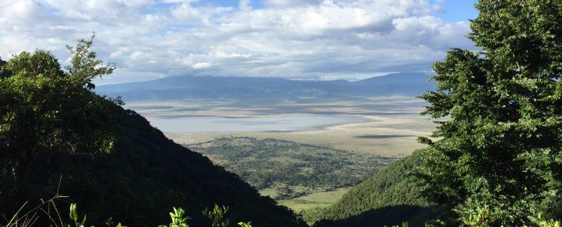 Daytrip Ngorongoro